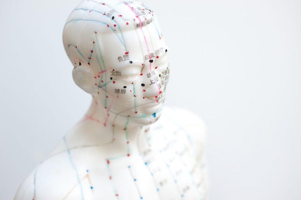 Tour d'horizon sur l'acupuncture